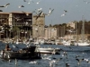 Marsiglia-Il-Porto