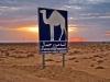 Tunisi-Escursioni-nel-Sahara