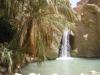 Tunisi-Oasi