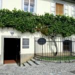 Maribor viticoltura