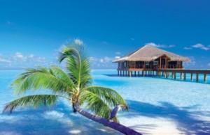 Vacanze alle Maldive-Atollo-male dove alloggiare